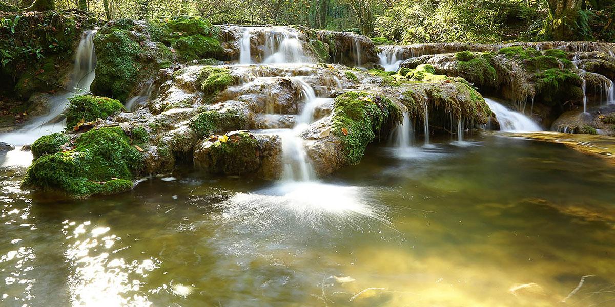Foires et salons : les petits ruisseaux font les grandes rivières